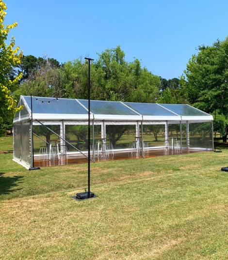 clear roof marquee hire